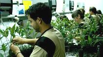 Software empresa sector agrícola