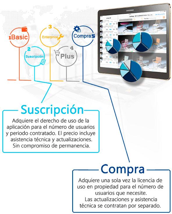 Consultoría e integración de software empresarial