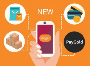 Módulo TPV con PayGold